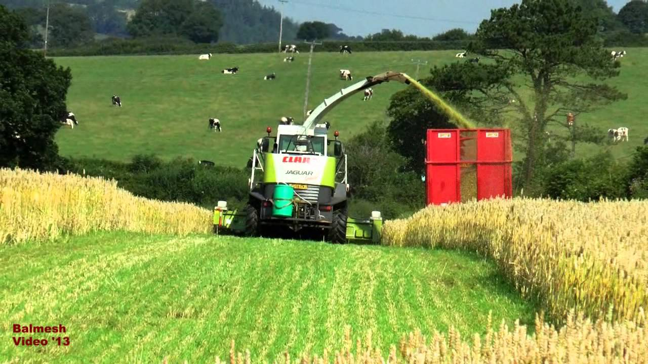How to Make Silage How to Make Silage new picture