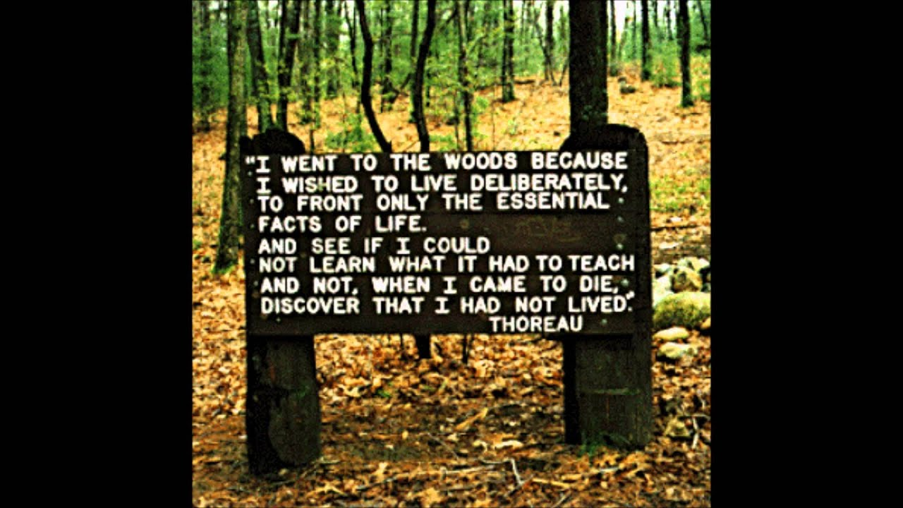 report transcendentalism We're focusing on the dark side of transcendentalism these days im not sure if we're gonna cover this but im just wondering, what are some bad things about being a transcendentalist if there are any.
