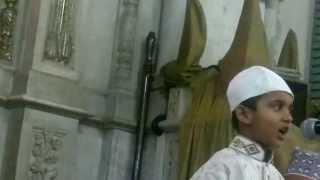 Sehzad e Zulfi Miya-Syed Ali Haider on Urs e Syedi Barkaati Minara Masjid Mumbai 20 april 2013