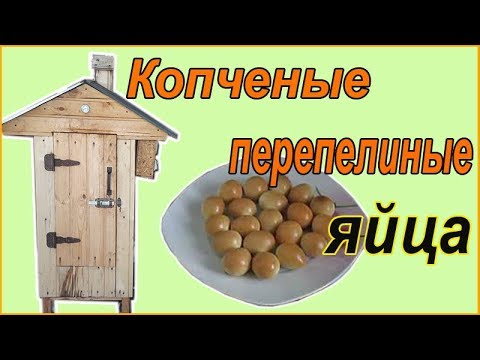 Рецепт копченых перепелиных яиц от Зауральского подворья.