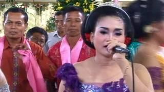download lagu Ireng Manis Versi Tayup Rahayu Ngremboko gratis