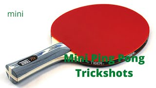 Mini Ping Pong Trickshots [With my Twin]