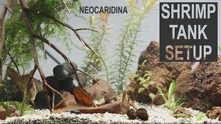 Shrimp Tank Setup - NeoCaridina -