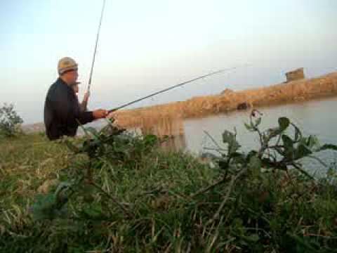 Câu cá đầm - Caucaquangbinh.com