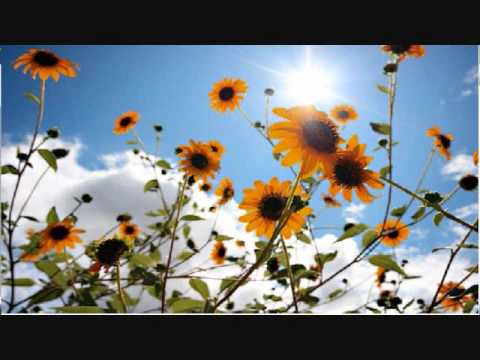 Joshua Radin - Brand New Day (Lyrics) Video