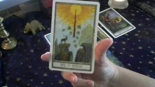 Pisces September 2016 Psychic Tarot Reading