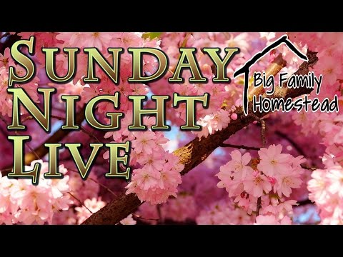 Sunday Night LIVE with Big Family Homestead 5_14