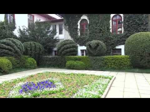Nikitskij botanicheskij sad,Никитский ботанический сад, в Крыму, Ялта