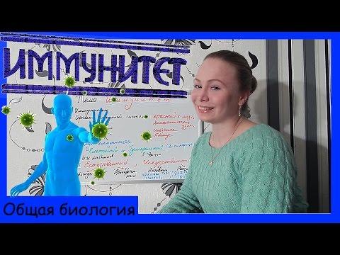 Урок биологии №54. Иммунитет. Органы иммунитета.