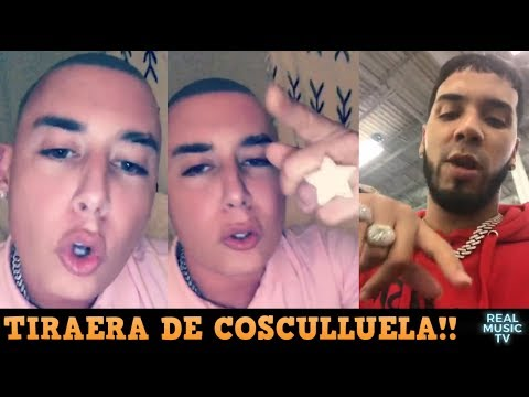 COSCU vs ANUEL: ¿QUIÉN VA GANANDO? - SoLpresa!