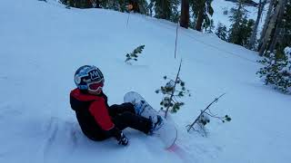 Ashton snowboard through trees #2 @ Mammoth, Knee Deep trail.