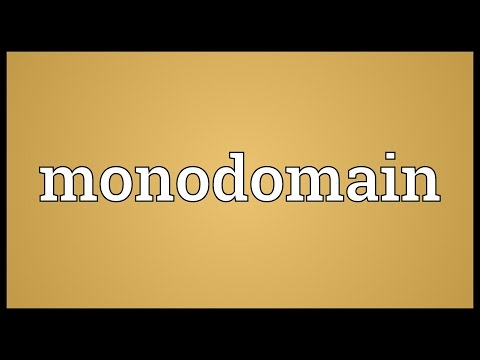 Header of Monodomain