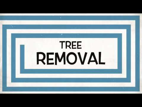 Tree Trimming and Tree Removal In York PA, Lancaster PA and Harrisburg PA