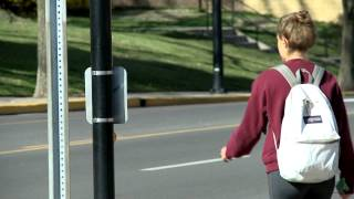 Sharing the Road: Pedestrian, Bicycle, and Motor Vehicle Safety