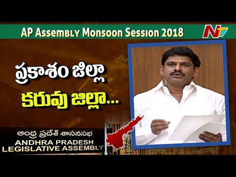 MLA Yeluri Shamba Shiva Rao Speech at AP Assembly Over Crops Damage in AP | NTV
