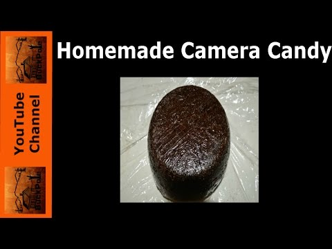 How to make DIY Camera Candy for $2.81. Big Buck Lollipop