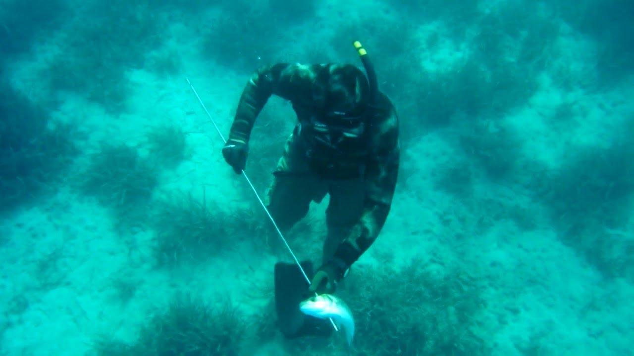 z  pk  n ve bal  k  HARPOON  amp   FISH         SEABASS   2 100 gr  Levrek