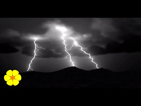 Very Loud Heavy Rainstorm Thunderstorm - Time to Go to Sleep - Lluvia torrencial palo de agua