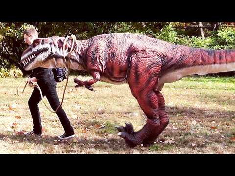 Walking My Pet Dinosaur video