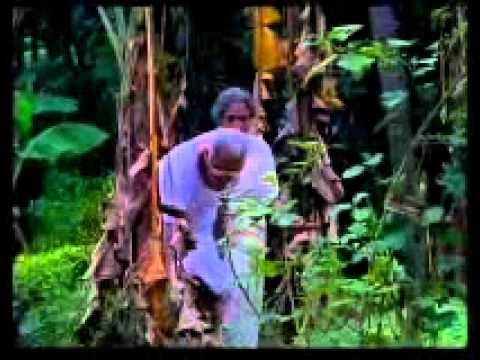 Cheru Punchiri Begin video