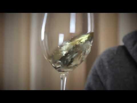 Wine Tasting - Gavi del Comune di Gavi - Etichetta Nera