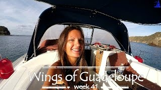 Wings of Guadeloupe by Sailing JAEKA, week 41