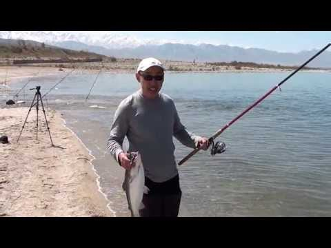 ловля форель в таджикистане