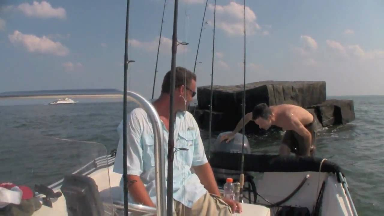 Tautog tog fishing jumping off the ice breakers for Lewes delaware fishing report