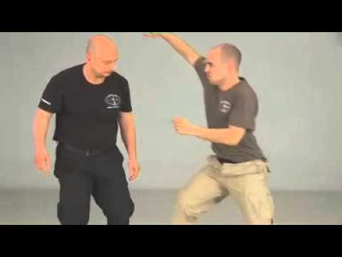 Russian Systema, Disarm Techniques Image 1
