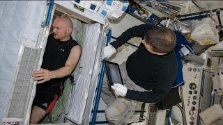 Space Station Live: Fine Motor Skills