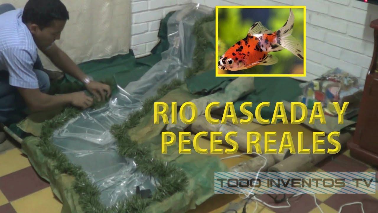 Pesebre con peces r o y cascada reales part 1 youtube for Cascada artificial casera