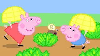 Peppa Pig Official Channel | Peppa Pig Pretends to be a Snail