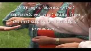 Soluna Medicinal Gardens - Part 3