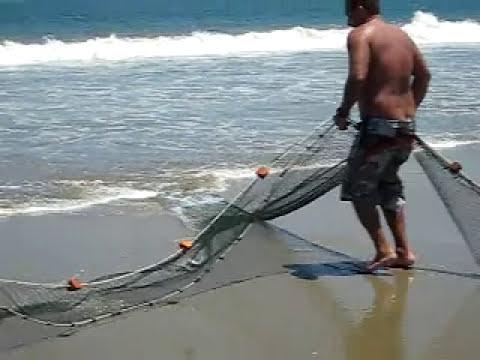 Pesca con chinchorro en la playa Los Organos