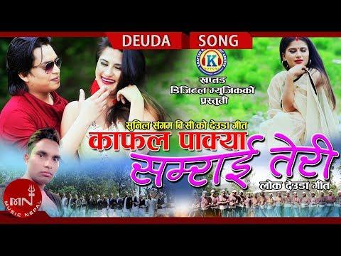 New Nepali Deuda Song 2075/2018 | Kafal Pakya - Sunil sangam BC & Gauri Bhatta Ft.Dipak & Alina