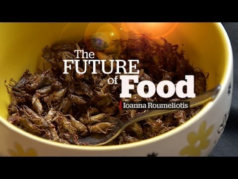 Global population Future of Food will be Eating Bugs