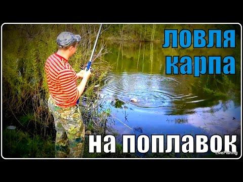 ловля на поплавочную в мае