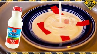 Can You Fix a Plate With Milk? (Debunking Viral Videos)
