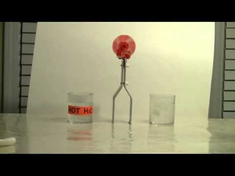 Thermoelectric (Peltier--Seebeck) Effect Demonstration