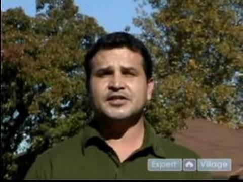 Jose Zuniga Biography Expert Jose Zuniga Bio