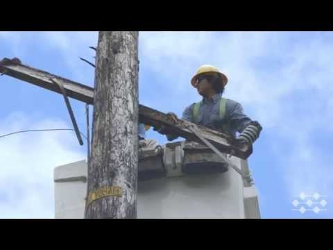 Hawaii Electric Light crews post Iselle (Part 2 of 4)