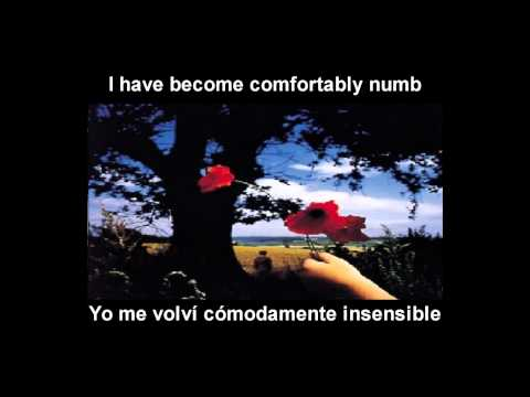 Pink Floyd - Comfortably Numb (Español