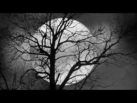 Nilfer - Geceler