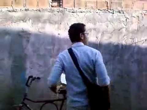 Partoba 5 video