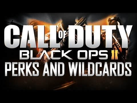 Black Ops 2 Online - Perks and Wildcards Explained!