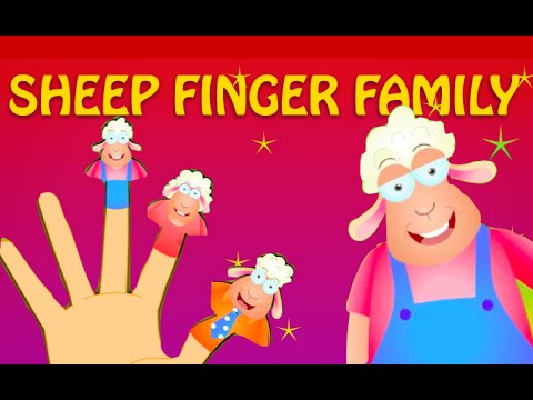Sheep Finger Family - Finger Family Rhymes For Children