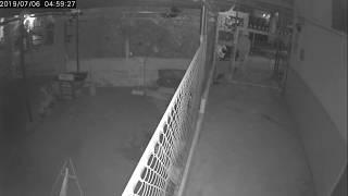 Ăn trộm lẻn vô nhà trọ bẻ khoá xe máy (đường ĐX 08, xã Tân Vĩnh Hiệp)
