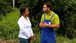 Escuela de campo:Sistemas de riego en cítricos - 31 de julio