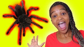 SPIDER IN GIRLS MOUTH! | Onyx Kids