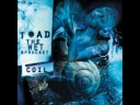 Toad the Wet Sprocket de Whatever I Fear